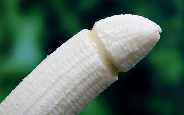 tamaño del pene