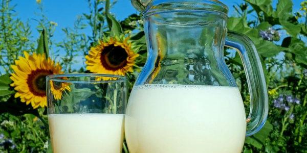 leche salud