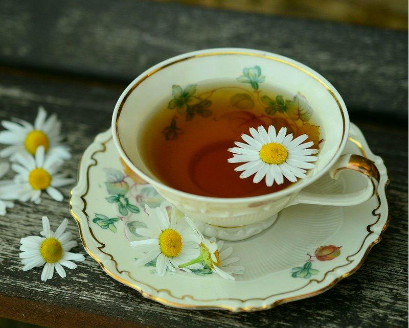 ¿Cuál es el mejor té para la salud?