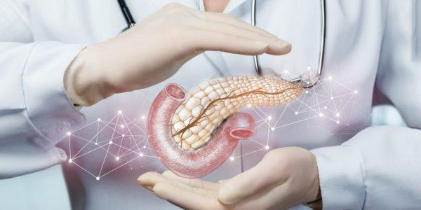 función del páncreas