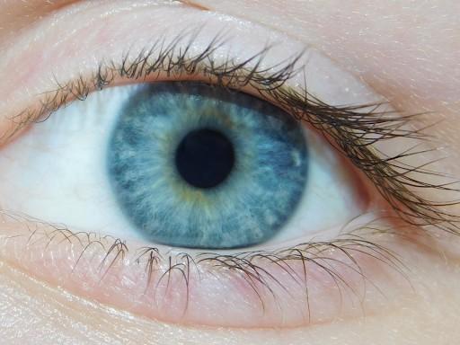 ¿Cómo tratar y prevenir las alergias oculares provocadas por la llegada de la primavera?