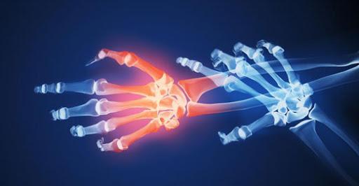Células madre abren caminopara regenerar tendones