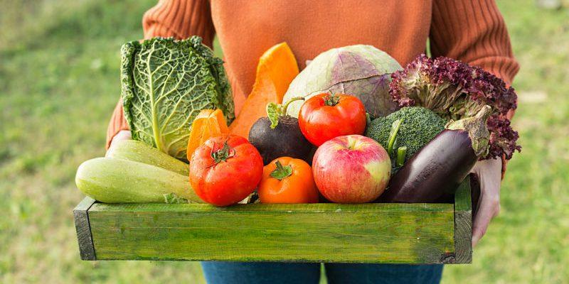 Alimentos ecológicos: la mejor alternativa saludable